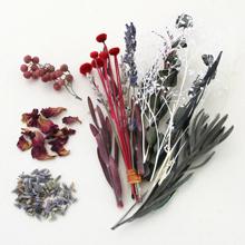 香り花咲くアソート レッド(数量限定)