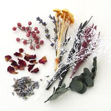 香り花咲くアソート イエロー(数量限定)