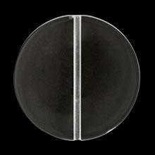 アクリル ドイツ製 コイン クリスタル